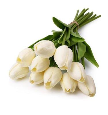 Τουλίπες Λευκές Love