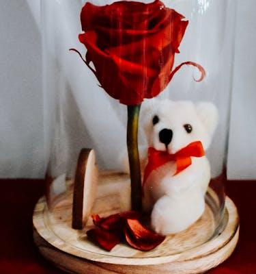 Σύνθεση Forever Rose με Αρκουδάκι