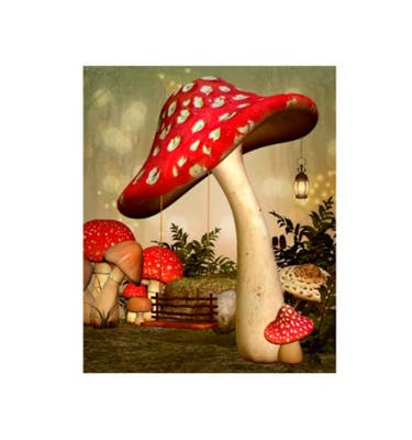 Ευχετήρια Κάρτα Χωρίς Μήνυμα Mushroom